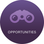 Round Icons 1 Opportunities